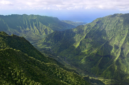 The Nature Conservancy of Hawaii
